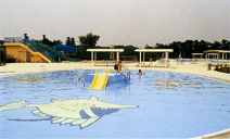 大宮運動公園-施設概要1