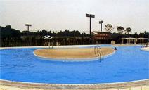 大宮運動公園-施設概要2