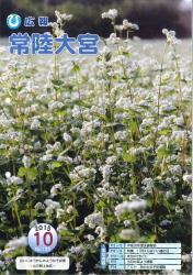 広報常陸大宮 平成27年10月号(そば畑)
