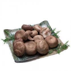 特産品椎茸トリ