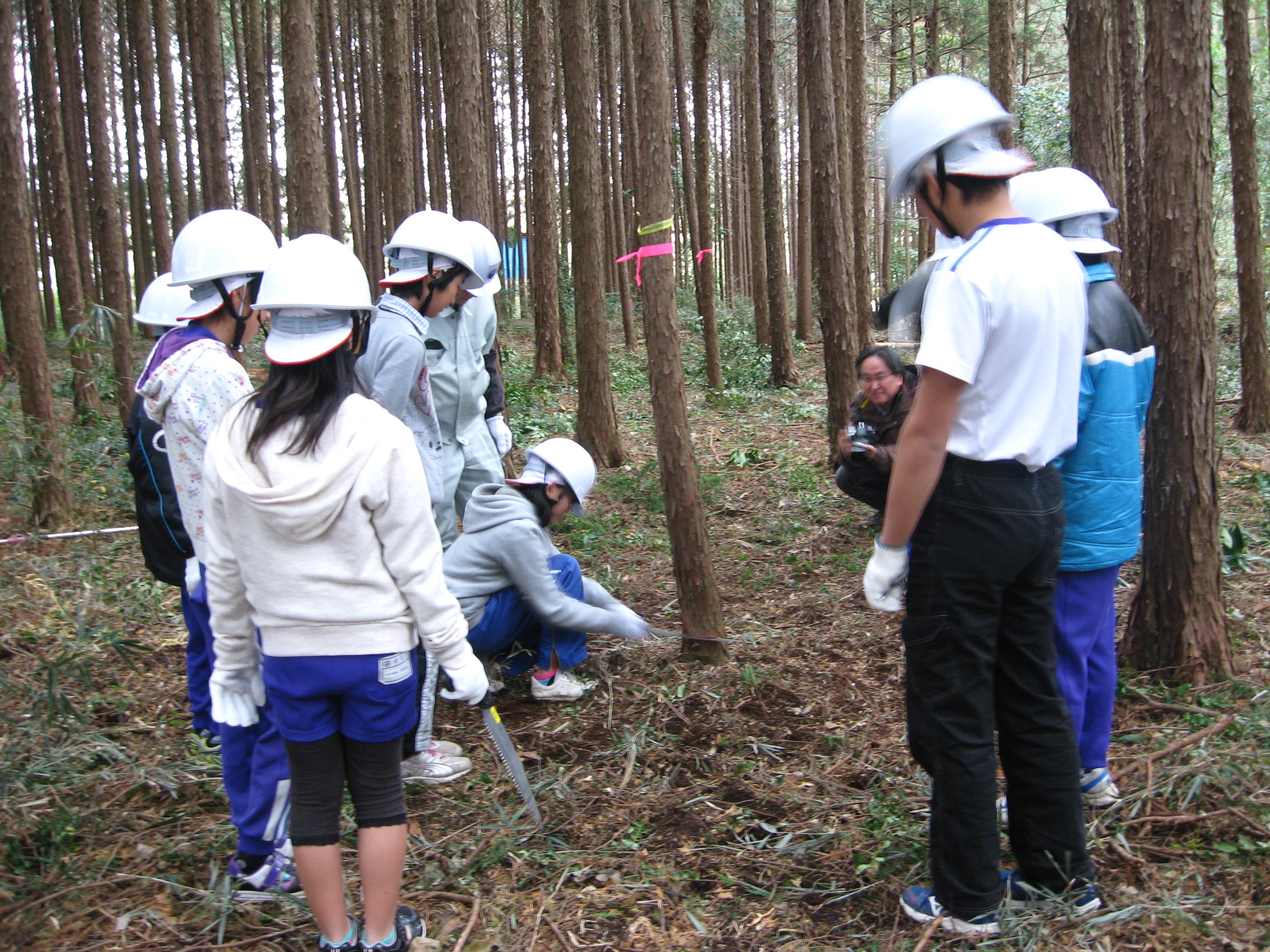 森林教室3