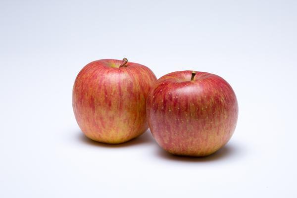 奥久慈あゆの里 りんご02