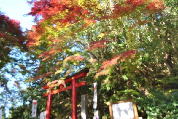 鷲子山上神社パターン2