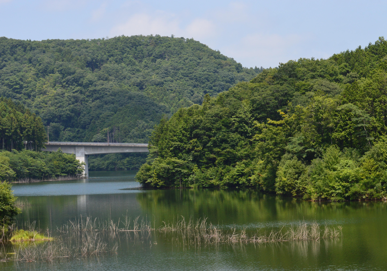 御前山ダム夏2
