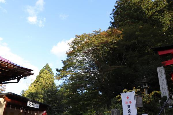 鷲子(2)