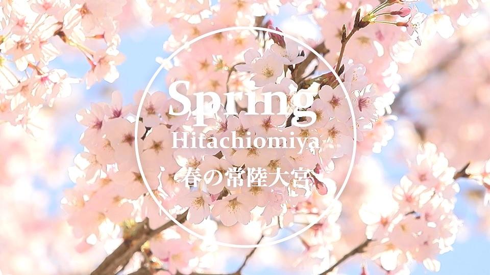 春の常陸大宮
