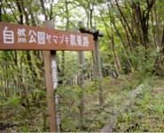 奥久慈県立公園を良くする会02