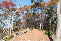 小瀬富士・小舟富士ハイキングコース12