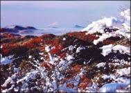 小瀬富士・小舟富士ハイキングコース18