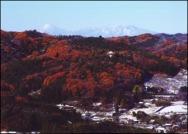 小瀬富士・小舟富士ハイキングコース20