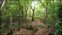 小瀬富士・小舟富士ハイキングコース22