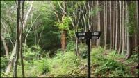 小瀬富士・小舟富士ハイキングコース24