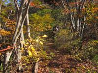 上山ハイキングコース03