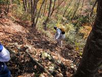 上山ハイキングコース09