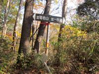 上山ハイキングコース11