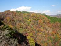 上山ハイキングコース14