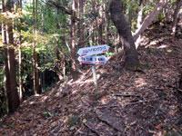 上山ハイキングコース16