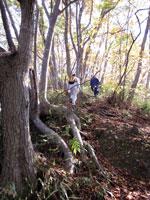 上山ハイキングコース18