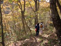 上山ハイキングコース21