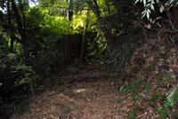 御前山ハイキングコース02