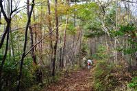 御前山ハイキングコース15