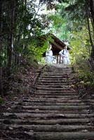 御前山ハイキングコース18