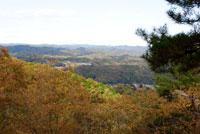 御前山ハイキングコース19
