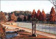 大賀ファミリー公園