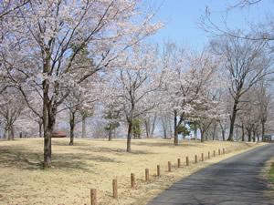 大宮自然公園