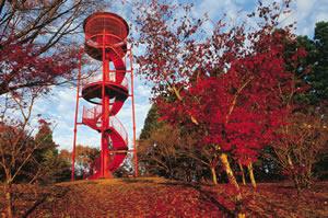 三王山自然公園01