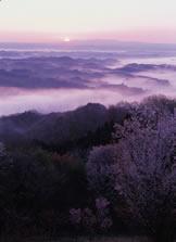 三王山自然公園04