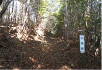 尺丈山ハイキングコース10