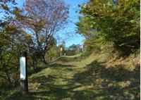 尺丈山ハイキングコース12