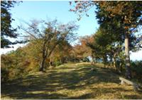 尺丈山ハイキングコース21