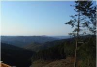 尺丈山ハイキングコース29