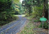 尺丈山ハイキングコース35