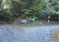 尺丈山ハイキングコース36