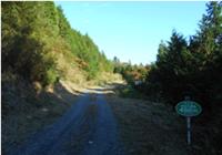 尺丈山ハイキングコース38