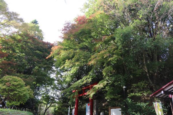 鷲子山上神社3