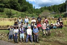 写真:田んぼ88プロジェクト稲刈り